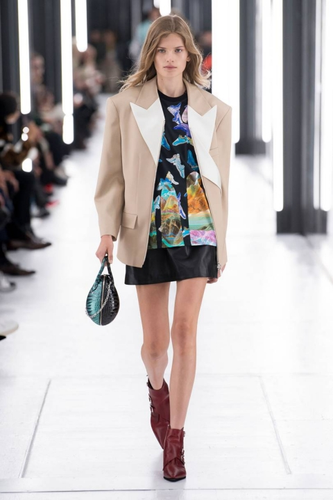 Louis Vuitton Spring Summer 2019 2