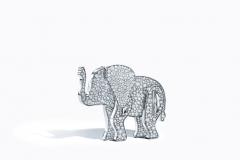 Tiffany & Co. Save the Wild